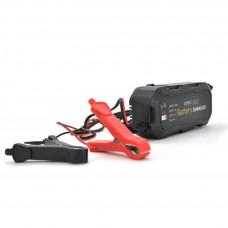 Мережевий зарядний пристрій для АКБ Merlion BYGD 6853D (6853D)