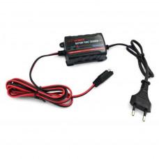 Мережевий зарядний пристрій для АКБ Merlion TE4-023